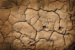 Earth texture. Cracked earth texture or background royalty free stock photography