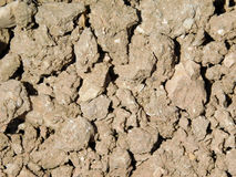 Earth texture royalty free stock images