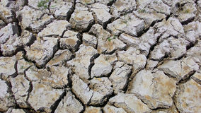 The earth texture  of land drought the soil ground cracks and no water lack of moisture in dry hot weather Royalty Free Stock Photo