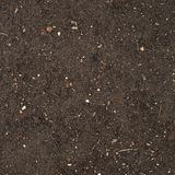 Earth texture with a small stone admixture Royalty Free Stock Photos