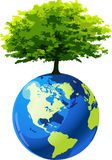 Earth with tree Stock Photo