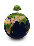The Earth with a tree. Planet the Earth with a tree on the white isolated background Royalty Free Stock Images