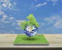 Earth with tree, Elements of this image furnished by NASA stock photo