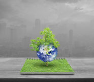 Earth with tree, Elements of this image furnished by NASA stock image