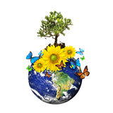 Earth with a tree and flowers over a white. Earth with a tree and flowers isolated over a white background/ Environmental concept Royalty Free Stock Photos
