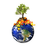 Earth with a tree isolated over a white background Stock Photos
