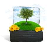 Earth with trees and green grass in travel bag Royalty Free Stock Photos
