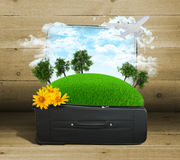 Earth with trees and green grass in travel bag Stock Photo