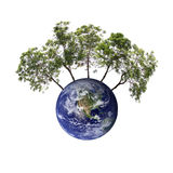 Earth and trees that represents conservation. Stock Photo