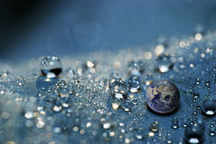 Earth in Water drops Royalty Free Stock Photo