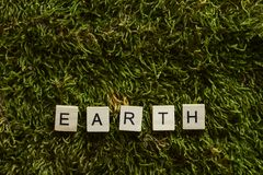 Earth written with wooden letters cubed shape on the green grass. royalty free stock image