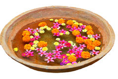 Earthen bowl with flowers Royalty Free Stock Photos