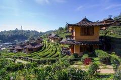 Earthen buildings and U-Long tea plantations at Ban Rak Thai Village,near Thai-Myanmar border,Mae Hong Son province,Northern Thail. Ban Rak Thai VillageCommunity stock images