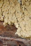 Earthen plaster Stock Image