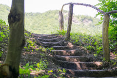 Earthen stairs Stock Photography