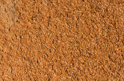 Earthen wall Stock Image