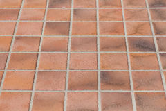 earthenware floor tile Royalty Free Stock Photography
