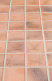 Earthenware floor tile Royalty Free Stock Images