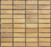 Earthenware floor tile Stock Photos