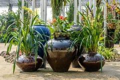 Earthenware in garden Stock Photos