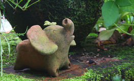 Earthenware in garden. Earthenware in the moss and fern garden Stock Photos