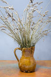 Earthenware Jar. With dried lavender branches Stock Image