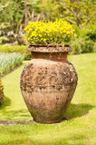 Earthenware jug with flowers Stock Photography