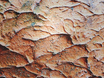 Earthenware pottery texture for background Royalty Free Stock Image