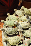 Earthenware pottery turtle beautifully decorated Stock Photos