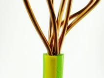 earthing кабеля Стоковое Фото