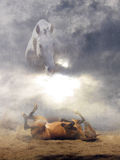 Earthly and heavenly horses. Two worlds - the earthly and the heavenly horses Royalty Free Stock Images