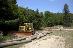 Earthmoving machinery in the forest Royalty Free Stock Photo
