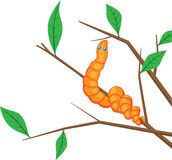 Earthworm on a branch Royalty Free Stock Photo