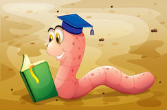 An earthworm reading a book at the ground Stock Photography