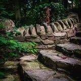 earthy больше моего камня stairway scenics портфолио стоковое изображение