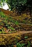 earthy больше моего камня stairway scenics портфолио Стоковые Фото