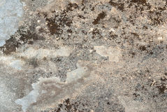 Earthy Background. Macro of old, deteriorating piece of slate Royalty Free Stock Photography