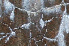 Earthy Background Stock Photography