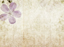 Earthy background image. Lovely background image with floral elements. very useful design element vector illustration