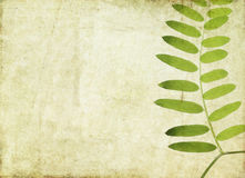 Earthy background image Royalty Free Stock Photo