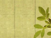 Earthy background image. Lovely background image with floral elements. useful design element vector illustration