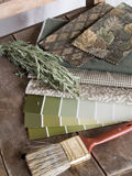 Earthy green interior decoration plan. Earthy green tone paint sample cards, fabric swatches and a paintbrush on a rustic, unpainted chair with a twig of Stock Image
