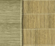 Earthy green and yellow bamboo strips. Earthy green and yellow bamboo strip background Stock Photography