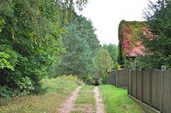 Earthy road. In the autumn village royalty free stock images