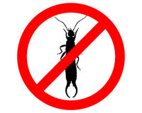 Earwig prohibited Stock Photography