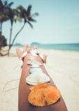 Eashell på den brunbrända flickaarmen på den tropiska stranden i sommar Royaltyfri Fotografi