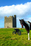 Easky Castle Co. Sligo Ireland. Easky castle with a horse co. sligo ireland on a beautiful sunny day Royalty Free Stock Images