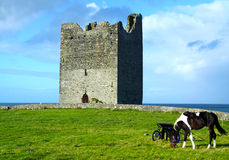 Easky Castle Co. Sligo Ireland. Easky castle with a horse co. sligo ireland on a beautiful sunny day Royalty Free Stock Photo