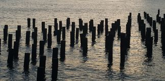 East河码头打桩残余如photgraphed从布鲁克林大桥公园 库存照片