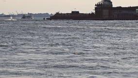 East河,曼哈顿中城地平线 纽约,美国 股票视频